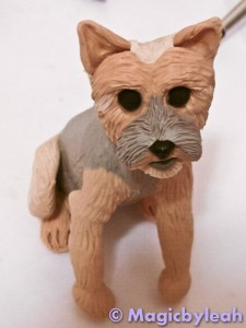 Bodewell the Yorkie textured paws 2