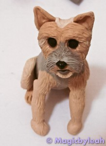 Bodewell the Yorkie textured paws